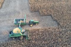 Fall harvest 120 2